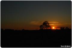 Sunset (Tiago De Brino) Tags: sunset sky sun sol de nikon do nuvole cu cielo tiago sole por nvens brino barretos blueribbonwinner d40x