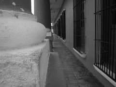 Archivo Tlacotalpan - Agosto 2008 (3)