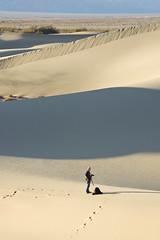 Photographer at Work (sandy.redding) Tags: california landscape nationalpark sand desert dunes dune deathvalley stovepipewells deathvalleynationalpark arrakis desertplanet dvnp mesquitedunes shotwithstevemendenhall nikkor18200mmf3556g portraitorientedlandscape