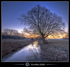 The Magnificent Tree, Sunrise @ Het Broek, Mechelen, Belgium :: HDR :: Vertorama (Erroba) Tags: tree ice grass photoshop sunrise canon rebel frozen frost belgium belgique tripod belgi sigma naturereserve tips remote brook 1020mm erlend hdr mechelen cs3 3xp photomatix tonemapped tonemapping xti 400d vertorama hetbroek erroba robaye erlendrobaye alemdagqualityonlyclub vosplusbellesphotos