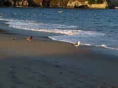 On the Seashore (double figure) Tags: sea shore