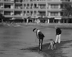 Old man and the sea (Herr T.) Tags: holidays urlaub mallorca santaponca balears