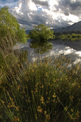 Evening on the Rees estuary, Glenorchy, Otago, New Zealand (goneforawander) Tags: new newzealand lake weather river landscape island town nikon scenery village pacific south small central d70s historic southern zealand nz otago queenstown dart rees glenorchy aoteoroa wakitipu goneforawander