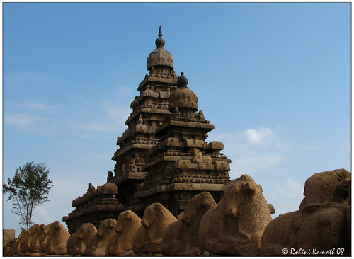 ShoreTemple and Nandis