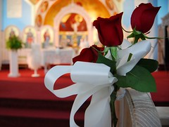 Roses lining the aisle (rsnlaud) Tags: flowers wedding red roses white church saint greek christ altar ribbon orthodox apostles matrimony demetrios theotokos