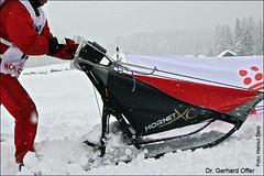 12 Gerhard Offer - Danler Hornet XC