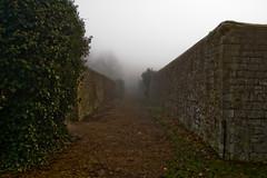 (llamnudds) Tags: mist misty fog wall eos creativecommons dri 450d llamnuds