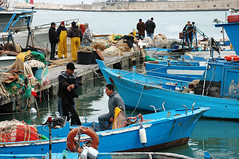 Trani (Italy) - Fishermen at harbour (Danielzolli) Tags: italien blue italy haven port puerto harbor fisherman italia harbour porto fisher blau hafen azzurro puglia italie fischer sud luka pescador pescatore balik pescatori pulli włochy balikci apulien italija mezzogiorno suditalia rybar süditalien taliansko rybolov appulo taljansko rybarz