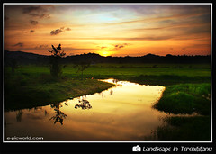 Self reflection (NeeZhom Photomalaya) Tags: sunset wallpaper reflection nature landscape photography best malaysia terengganu bestofthebest supershot flickrsbest platinumphoto aplusphoto theunforgettablepictures thefinalcrown goldstaraward spiritofphotography rubyphotographer dragonsdanger