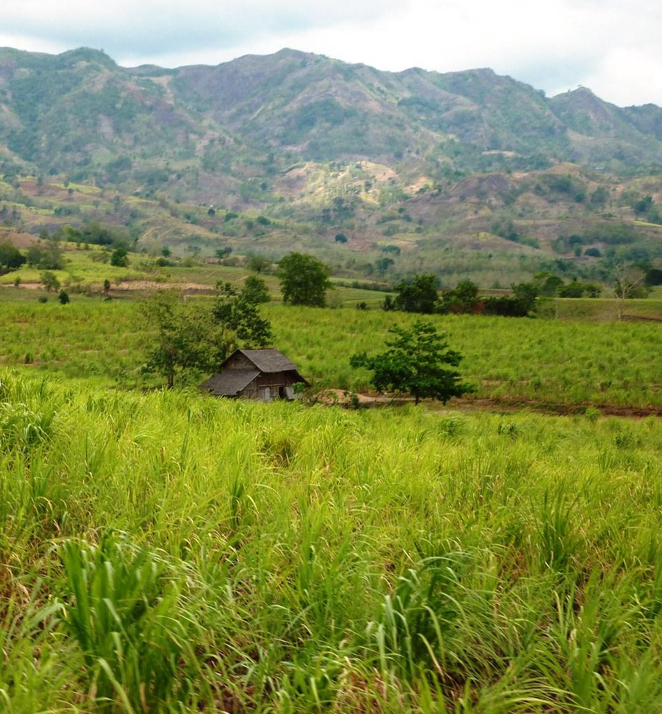 Negros-Dumaguete-Mabinay-Bacolod (127)