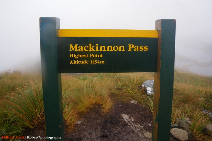 Mackinnon Pass