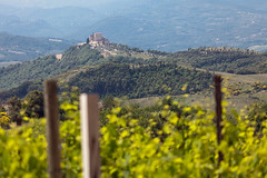 Ripa d'Orcia (hubertguyon) Tags: europa europe italia italie italy toscana toscane tuscany campagne country champs fields collines hills vigne vineyard ripa orcia village