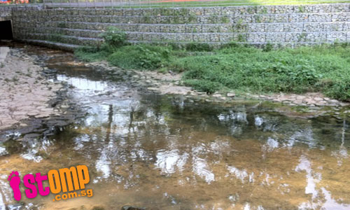 Bishan Park canal clear and doesn't stink now, thanks to STOMP tip-off
