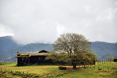 Talakaveri 1