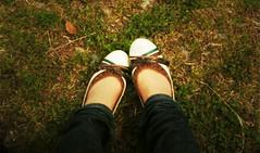 Sunday of a rainy day. (sachi..) Tags: park shoe toycamera