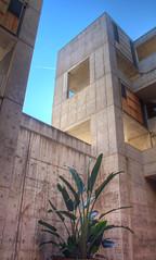 Tower (MarkUrich) Tags: architecture san diego institute salk lajollatorreypines