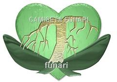 coracao folha arvore verde ecologia amor