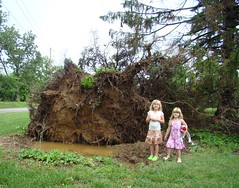 Girls and Mom's downed tree