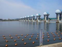 長良川河口堰・魚道下部