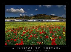 A Passage to Tuscany II (rusmi) Tags: train tuscany poppy aplusphoto alemdagqualityonlyclub