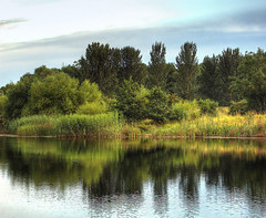 England: Bedfordshire Wetlands. Summer Reflections (Tim Blessed) Tags: uk trees sky nature water clouds reeds landscape scenery lakes wetlands ponds singlerawtonemapped