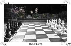 Shatranj (Sherry Iranique) Tags: chess shatranj schachchessshatranj
