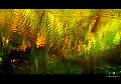 A lake in my wild river...!!! / Un lac dans ma rivire sauvage...!!! :))) (Denis Collette...!!!) Tags: wild lake canada reflection river photo bravo quebec joy lac rivire safari reflet qubec hexagram serenity walden collette photosafari impressionist joie denis 58 thoreau sauvage iching srnit portneuf firstquality impressionniste fpg yiking deniscollette pontrouge innerjoy hexagramme wildriver riviresauvage world100f hexagram58 hexagramme58 joieintrieure