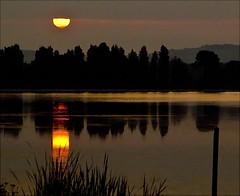 Sunday Delight  --  3 (algo) Tags: england cloud sun water sunrise reflections photography dawn topf50 bravo quality topv1111 topv999 topv222 algo topf100 100f naturesfinest tringreservoirs 50f abigfave goldenphotographer theperfectphotographer szembeszk