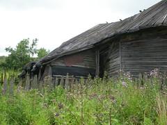 Gamalt hús við þjóðveginn / Old house by the road