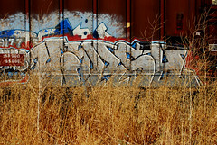 Harsh In Hiding (All Seeing) Tags: pop harsh bmb harshbmb