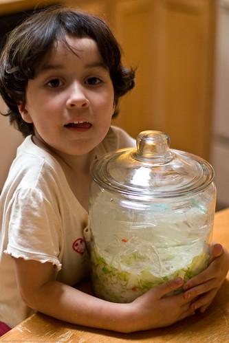 Humble Garden: organic homegrown lactofermented sauerkraut