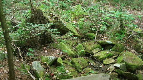 mossy rocks at Lowell Lake