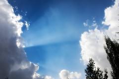 Heaven has a Lighthouse... (SonOfJordan) Tags: blue sky colour tree nature clouds aperture amman jordan automn xsi 450d  goldstaraward samawi sonofjordan shadisamawi  wwwshadisamawicom