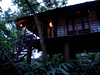 Our treehouse view from the ground (Jennifer Kumar) Tags: india haven hotel video kerala treehouse resort 2008 thekkady southindia indiatour carmelia hotelreviews carmeliahaven vandanmedu treehouseresort treehousehotel pioneertravels resortindia