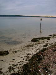 early morning on the beach, Wareham (emikw) Tags: thanksgiving beach wareham