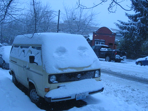 Smiley Snow Bug
