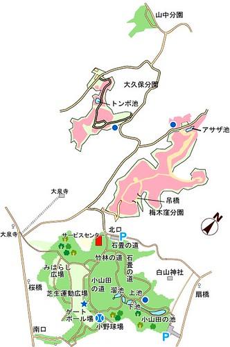 map06301