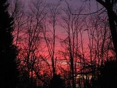 December Sunset (jrix) Tags: sunset sky quote quotation amazingcolors dec08 bej theenchantedcarousel