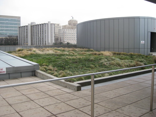 Seattle green roof, Muni building