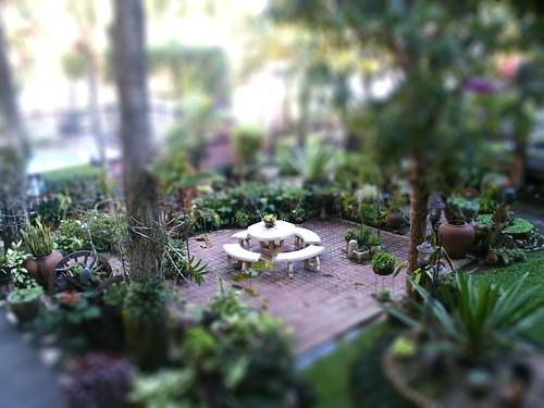 patio_tiltshift