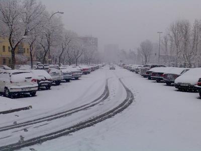nevada calle