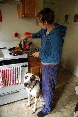how to cook with pitbulls