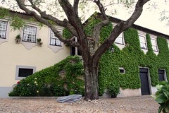 Quinta da Casa Amarela