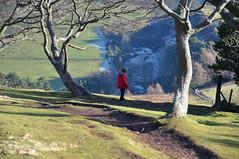 shadows (neil1877) Tags: nature landscape ilovenature soe pentlandhills potofgold eyecatchers marvellousphotoaward ourmasterpieces sweetmermaids goldenheartaward animalandoutdoorsphotographersworldwide