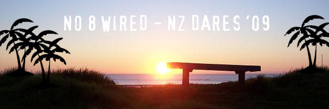 NZ Dare Banner 09