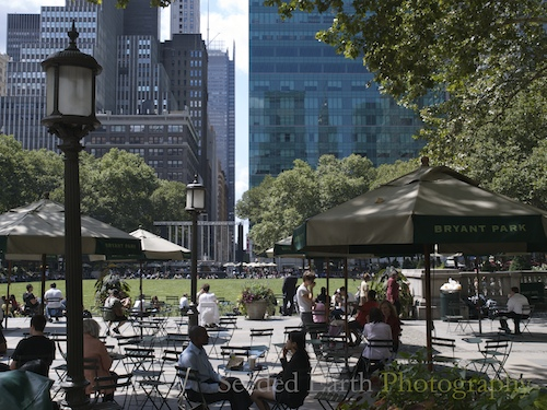 A Green Space in Manhattan