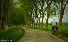 Solo (zzapback) Tags: robert bicycle de rotterdam klein nikon alone fotografie solo maas 18200 oude 65 helptheaged fiets rhoon voogd grienden vormgeving d90 grafische vrii bergselaan liskwartier profijt zzapback zzapbacknl robdevoogd stayawakehaveaniceday