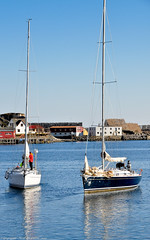 Look out ! (Neil. Moralee) Tags: sea mike norway boat sailing harbour neil sailor bodo lofoten moralee neilmoralee