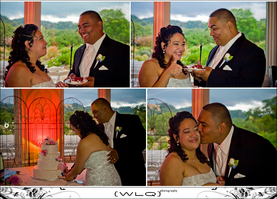 JessicaMarioWedding-collage34