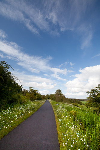 A view of the Sustrans bike path south of Paisley
